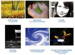 Flickr - Le meilleur des 7 derniers jours